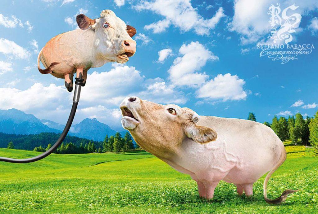mucca che vola