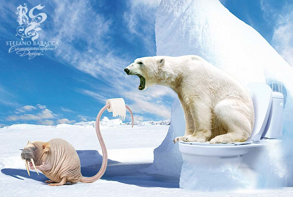 Orso Polare al bagno