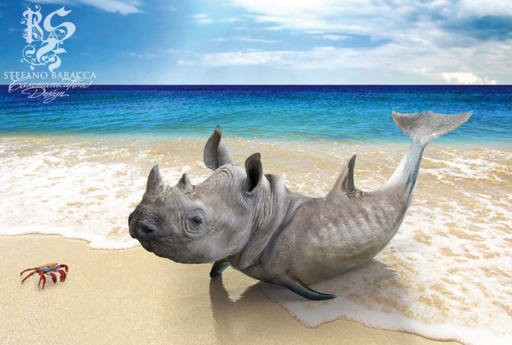 Delfino rinoceronte