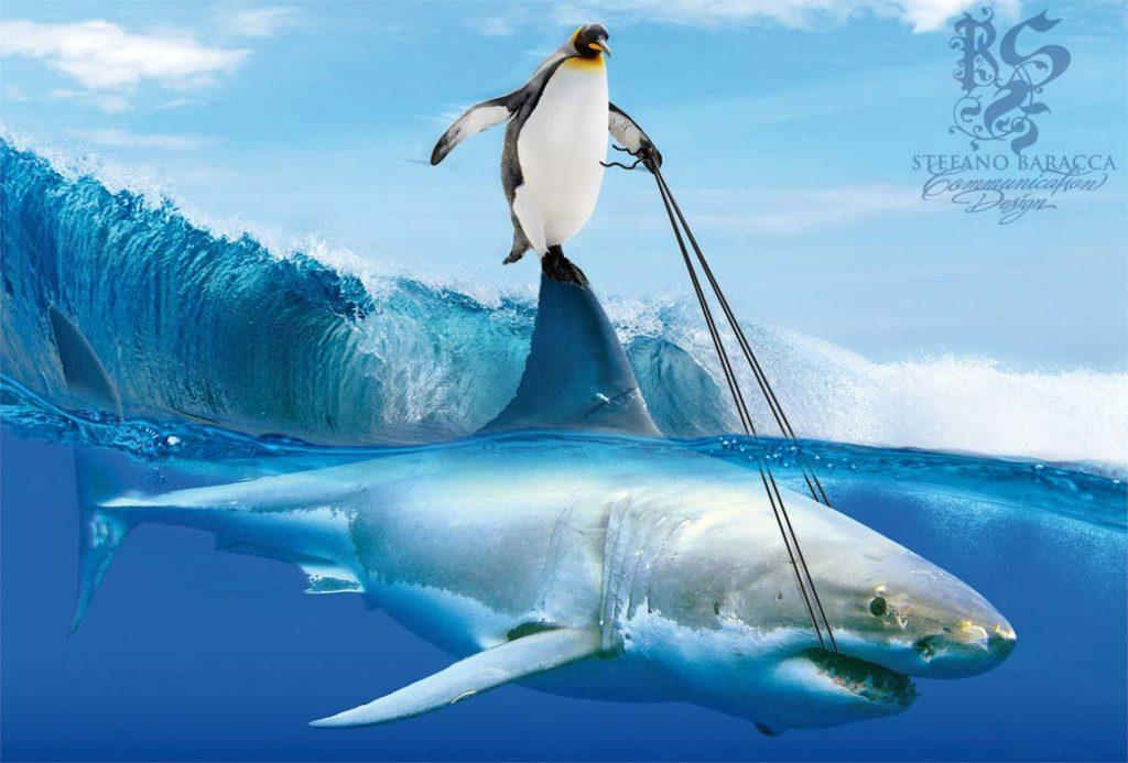 Pinguino che cavalca un squalo