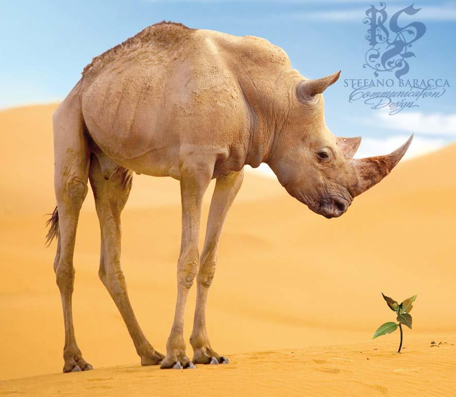Cammello rinoceronte