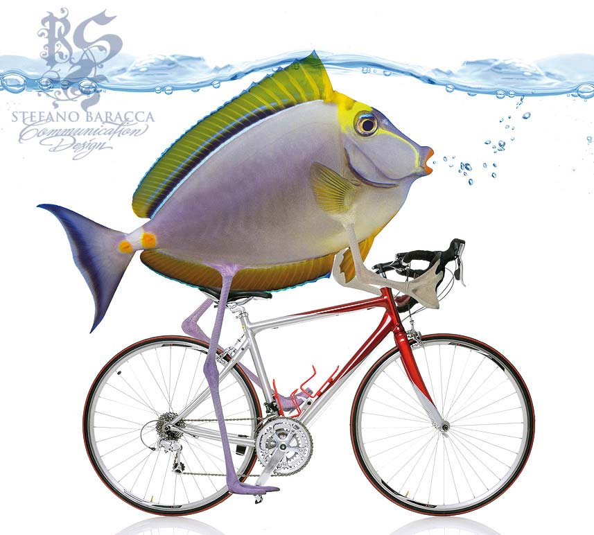 Pesce in bicicletta